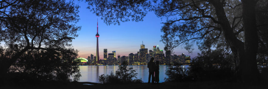 Toronto skyline at night from toronto island through the trees