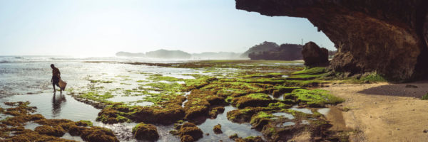 Low tide at the beach