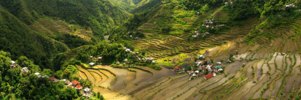 Water filled rice terrace valley in the Philippines