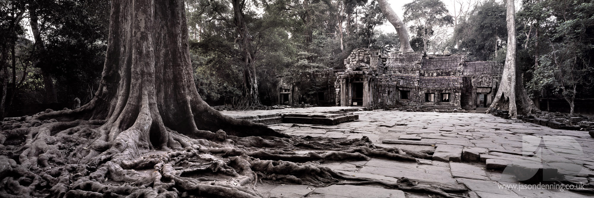 SIEM REAP TA PROHM ENTRANCE