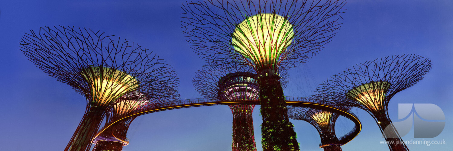 Supertree grove gardens by the bay