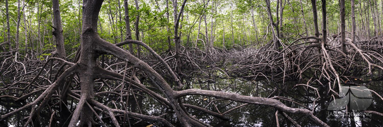 Pranburi Forest Park Hua Hin