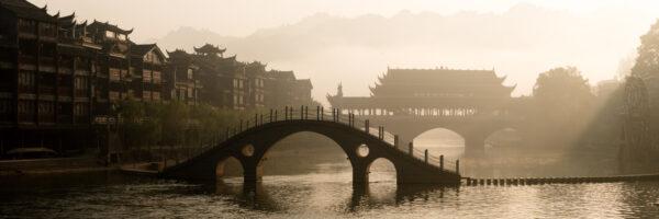 phoenix town china