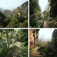 Yangjiajie hiking trail
