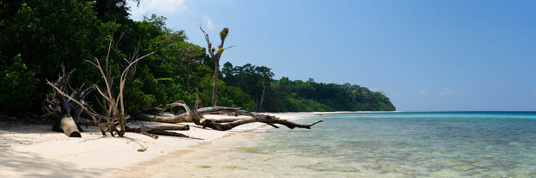 Havelock Island India