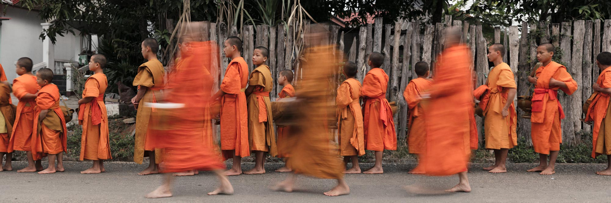 Young Buddhist Monks as they form a line to begin the alms giving ceremony in Laos