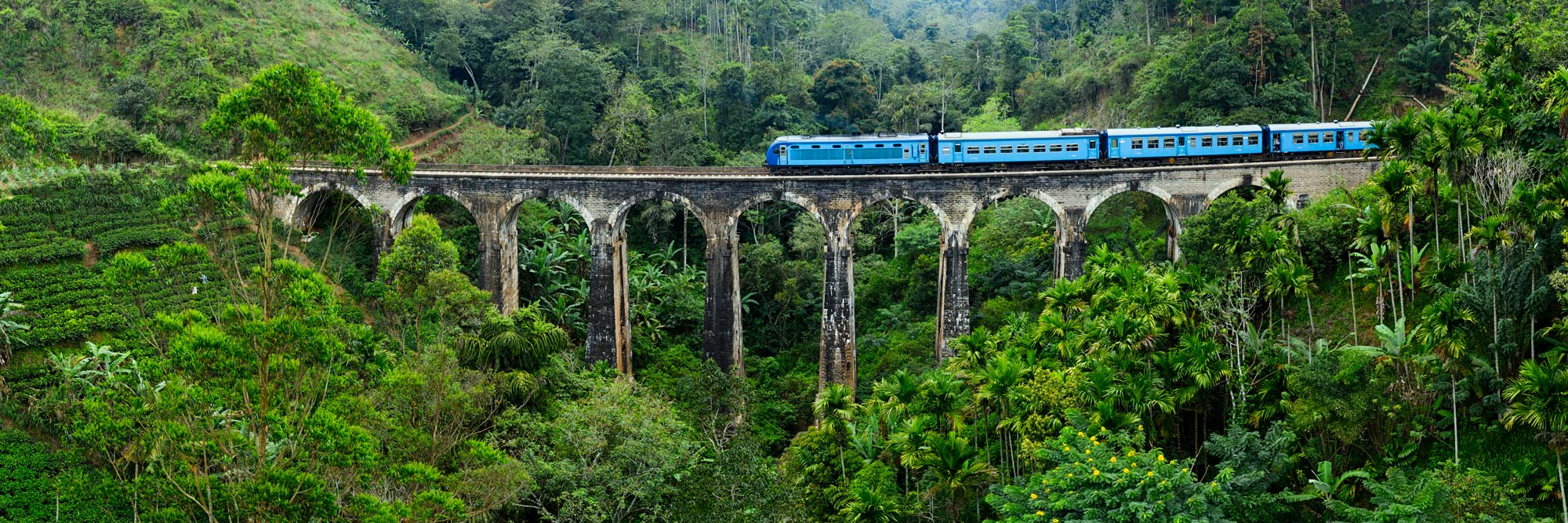 Sri lanken hills