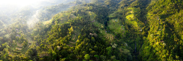 panorama of rice terraces from above