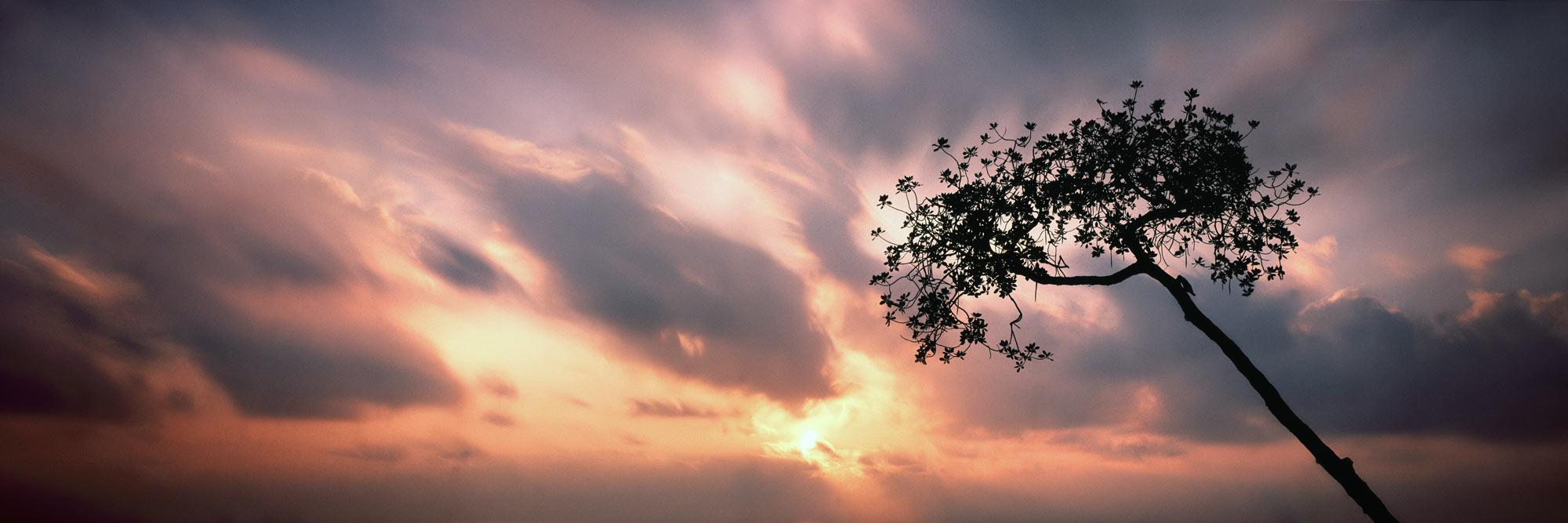 Fiery skies sunrise