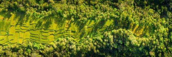 Indonesia aerial