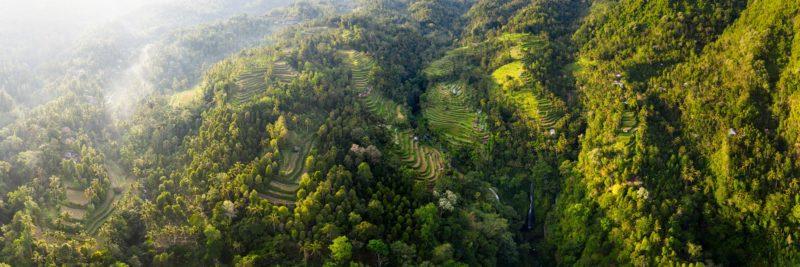 Bali drone