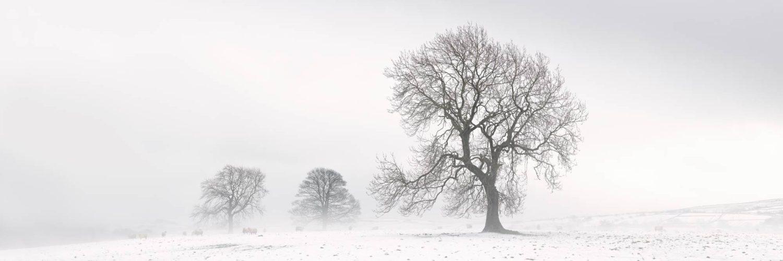 North Yorkshire snow print