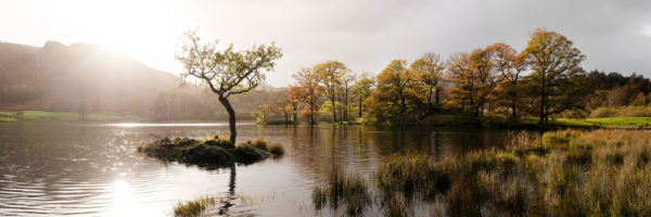 a panoramic print of Rydal water in the Lake District in autumn