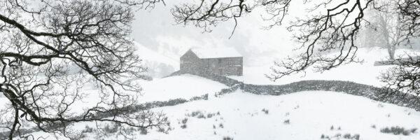 Keld and thwait fields in winter