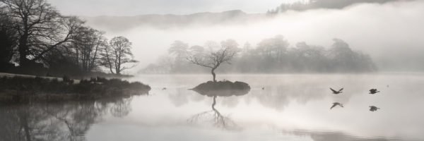 Lake District on a foggy day as birds fly past