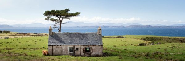 highland cow scratching an itch on a house on the scottish coast