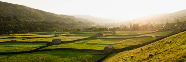 panoramic print of the Yorkshire Dales national park Swaledale